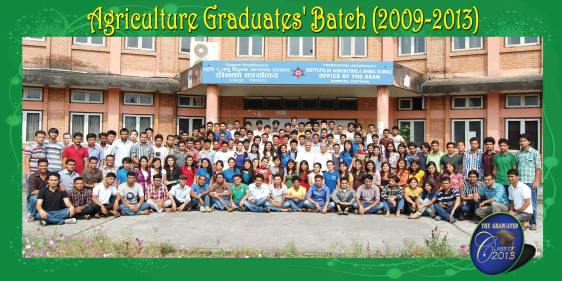 Batch 2008-12